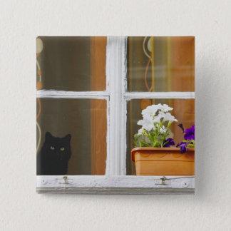 窓、Sighisoara、ルーマニアによって開花して下さい 缶バッジ