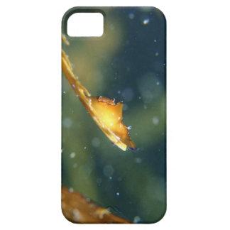 端 iPhone SE/5/5s ケース