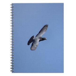 競争ハト飛行中にノート ノートブック