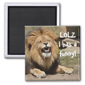 笑うライオンの磁石 マグネット