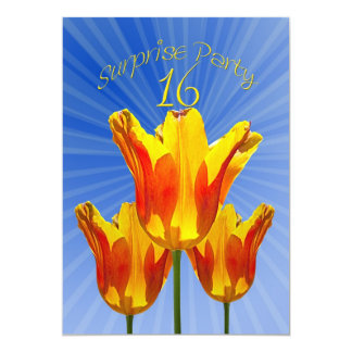 第16驚きの誕生日のパーティの招待状 カード