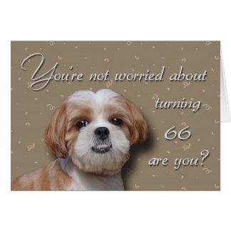 第66誕生日犬 カード
