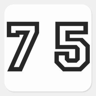 第75 スクエアシール