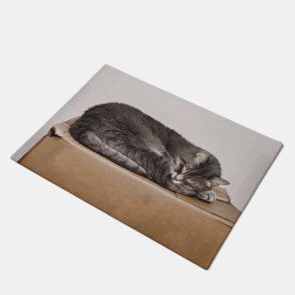箱で眠っている灰色の虎猫猫 ドアマット