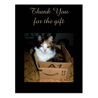 箱のおもしろいな茶色のぶち猫は郵便はがき感謝していしています ポストカード