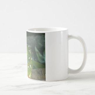 箱のヘビ コーヒーマグカップ