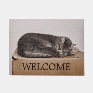 箱の歓迎で眠っている灰色の虎猫猫 ドアマット