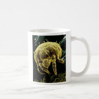 節足動物のAcariの顕微鏡のダニLorryiaフォーモサ コーヒーマグカップ