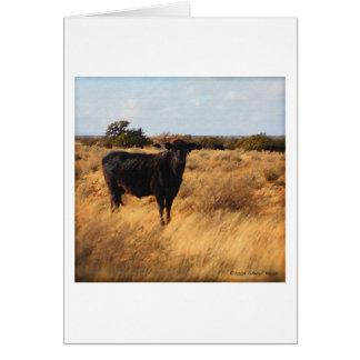 範囲の牛 カード