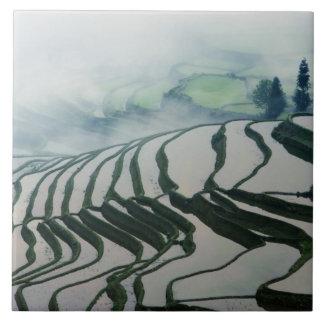 米分野の上の朝の霧 タイル