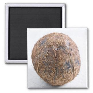 米国だけの使用のためのココナッツ。) マグネット
