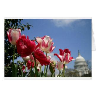米国の国会議事堂の春 カード