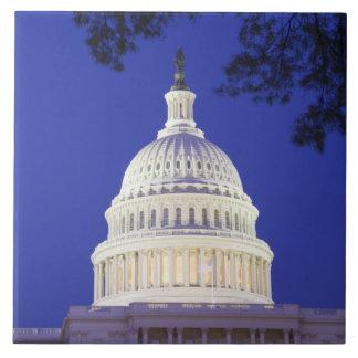 米国の国会議事堂夜にの円形建築、ワシントン州 タイル