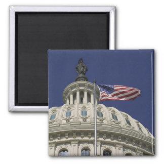 米国の国会議事堂、ワシントンD.C.、 マグネット