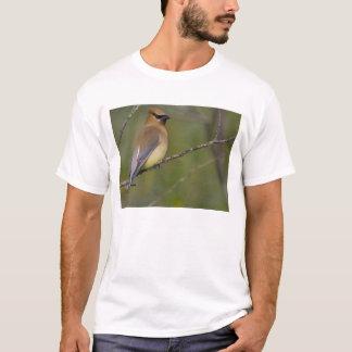米国の湖Sammamish、ワシントン州。 ヒメレンジャク Tシャツ