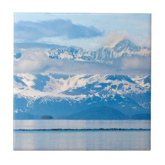 米国、アラスカのグレーシャー入江の国立公園7 正方形タイル小