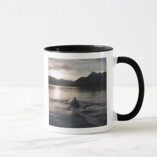 米国、アラスカのグレーシャー入江の国立公園、 マグカップ