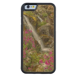 米国、アラスカのグレーシャー入江の国立公園。 Fireweed CarvedメープルiPhone 6バンパーケース