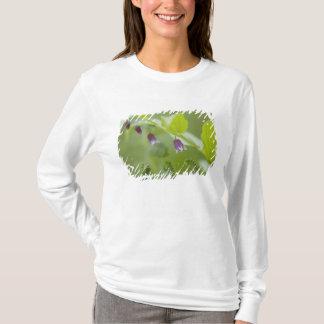 米国、アラスカのグレーシャー入江の国立公園 Tシャツ