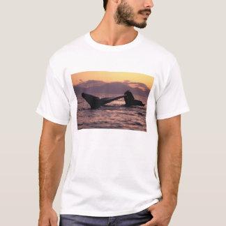 米国、アラスカの中の道のザトウクジラ Tシャツ