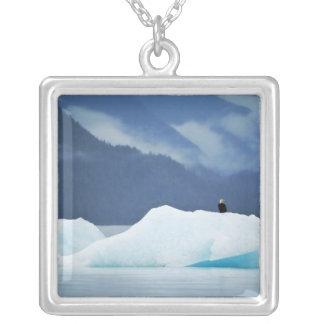 米国、アラスカの中の道。 とまる白頭鷲 シルバープレートネックレス