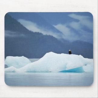 米国、アラスカの中の道。 とまる白頭鷲 マウスパッド