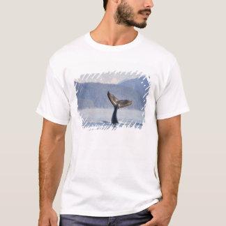 米国、アラスカの氷った海峡。 ザトウクジラの子牛 Tシャツ
