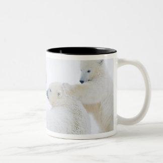 米国、アラスカの1002北極の海岸平野 ツートーンマグカップ