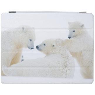 米国、アラスカの1002北極の海岸平野 iPadスマートカバー
