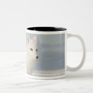 米国、アラスカの1002北極4の海岸平野 ツートーンマグカップ