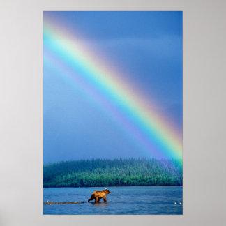 米国、アラスカのKatmaiの国立公園、ハイイログマ ポスター