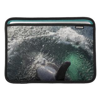 米国、アラスカのTenakeeの春。 シャチ MacBook スリーブ