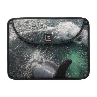 米国、アラスカのTenakeeの春。 シャチ MacBook Proスリーブ