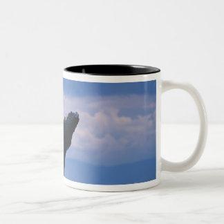 米国、アラスカのTongassの国有林、Humpback ツートーンマグカップ