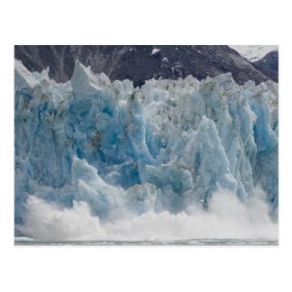米国、アラスカのTongassの国有林、Tracy ポストカード