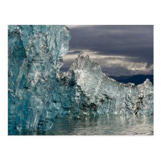 米国、アラスカのTongassの国有林、Tracy 3 ポストカード