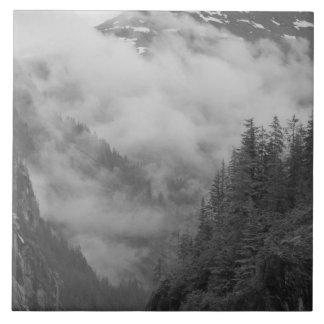 米国、アラスカ、ジュノーの雨林はフィヨルドを覆います タイル