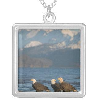 米国、アラスカ、ホーマーのイーグルスの禿げたHaliaeetus シルバープレートネックレス