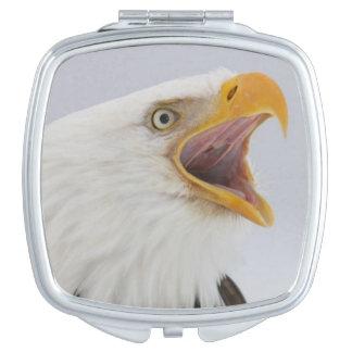 米国、アラスカ、ホーマー。 叫んでいる白頭鷲。 信用