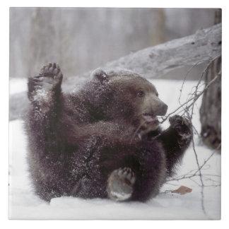 米国、アラスカ。 木が付いている年少のハイイログマの演劇 タイル