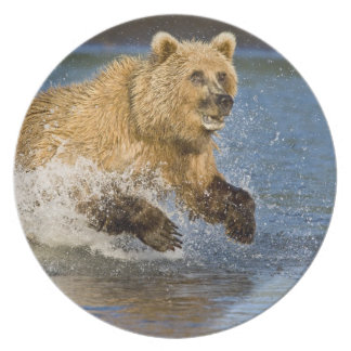 米国. アラスカ。 2のための沿岸ヒグマの魚釣り プレート