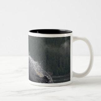 米国、アラスカ、AngoonのザトウクジラのMegaptera 2 ツートーンマグカップ