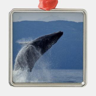 米国、アラスカ、Angoonのザトウクジラ(Megaptera メタルオーナメント