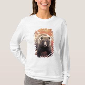 米国、アラスカ、Denali NPの女性の灰色グマ Tシャツ