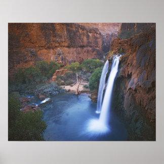 米国、アリゾナのグランドキャニオン、Havasuの滝 ポスター