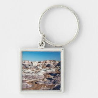 米国、アリゾナの化石森林の国立公園 キーホルダー