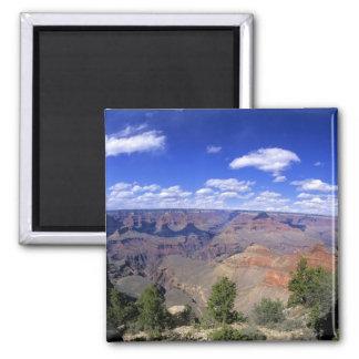 米国、アリゾナの南グランドキャニオンの国立公園 マグネット