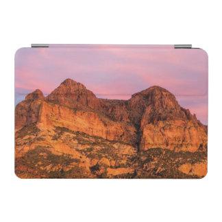 米国、アリゾナのTontoの国有林、Picketpost iPad Miniカバー
