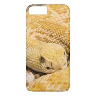 米国、アリゾナ、チューソンのアリゾナソノラの砂漠2 iPhone 8 PLUS/7 PLUSケース