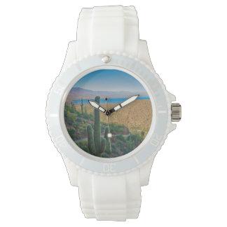 米国、アリゾナ。 入口からのTontoへの眺め 腕時計